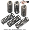 KIT RESSORTS EMBRAYAGE RENFORCES 450 CRF-R  2009-2010